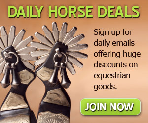 Half off horse tack
