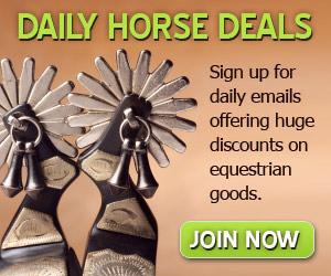Half off horse tack