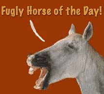Fugly Horse of the Day