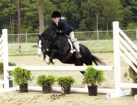 Show Horse Gallery - Courtway Formal Attire