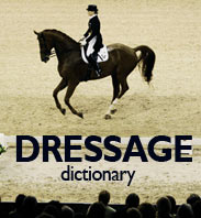 Dressage Movements Dictionary Part One