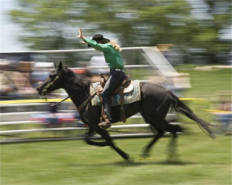 Show Horse Gallery - Extreme Cowboy Racing