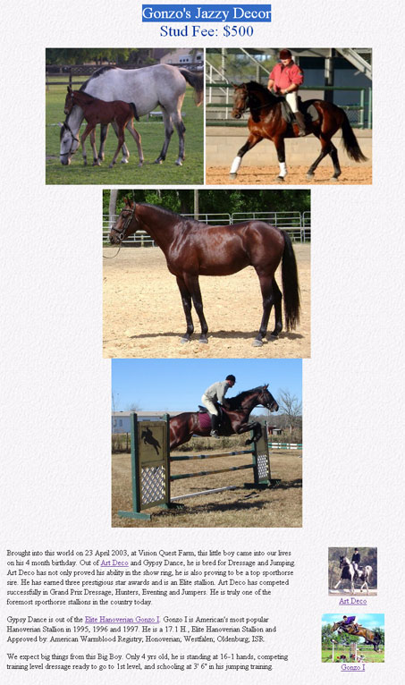Show Horse Gallery - This Might Not be the Best Photo to Advertise your Stud with