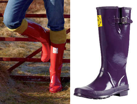 Show Horse Gallery - Joules Wellies and Wellibobs