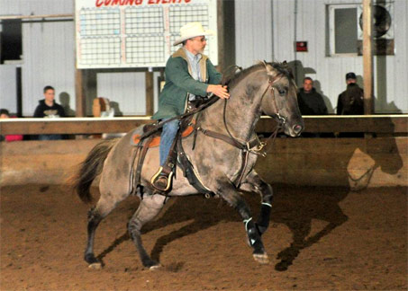 Show Horse Gallery - Kansas City Twister