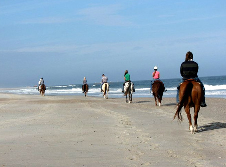Show Horse Gallery - Kelly Seahorse Ranch Beach Ride - Amelia Island, Florida