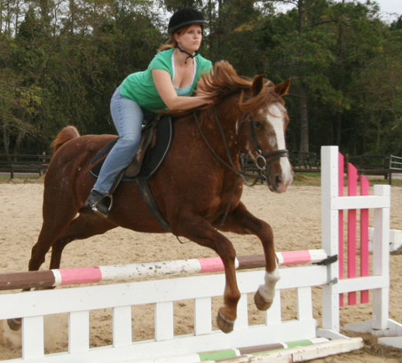 Show Horse Gallery - Paisley and Katie