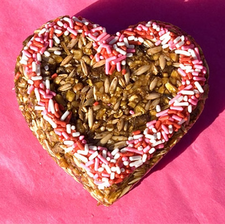 Show Horse Gallery - Petafour Valentines Day Treats