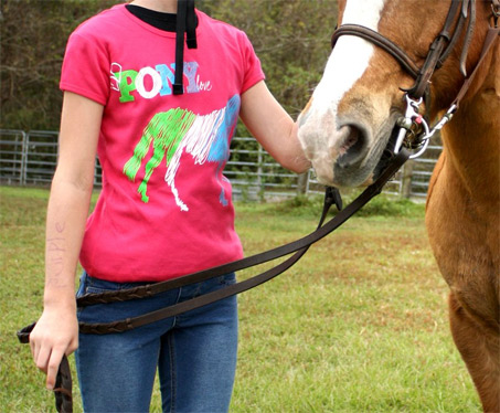 Show Horse Gallery - Pony Love Tee Shirt