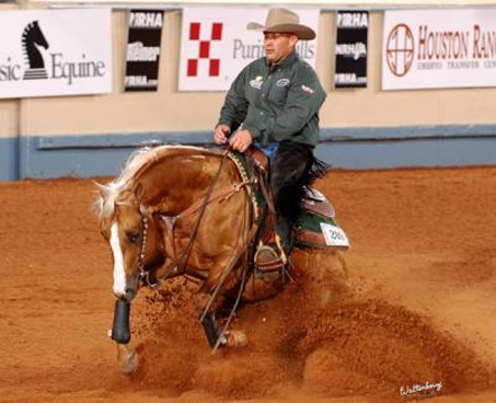 Show Horse Gallery - RC Fancy Step