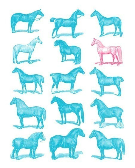 Show Horse Gallery - Vintage Horse Illustration Print
