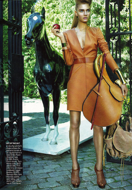 Show Horse Gallery - Vogue's New Line of Horse Hats
